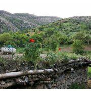طبیعت  روستای بیوران