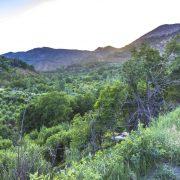 نمایی زیبا از طبیعت و غروب منطقه بیۆران