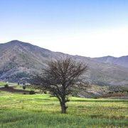 نمایی زیبایی از طبیعت منطقهبیۆران