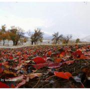 پاییز فصل رنگها