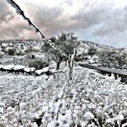 طبیعت سردشت پس از بارش برف