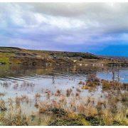 دریاچه سد سردشت