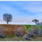 طبیعت زمستانی ـ بهاری سردشت